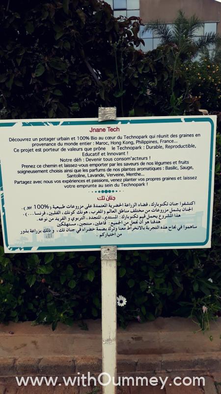 J'ai été au Green Day du Technopark de Casablanca 🌿 + photos du jardin Jnan Tech withoummey.com with oummey (17)