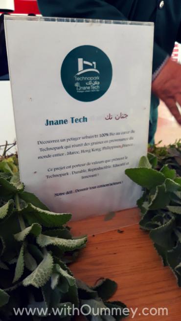 J'ai été au Green Day du Technopark de Casablanca 🌿 + photos du jardin Jnan Tech withoummey.com with oummey (8)